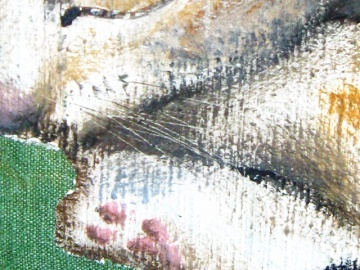"""Cat"" - DETAIL 1, oil on canvas - 50 x 70 cm, 2009"