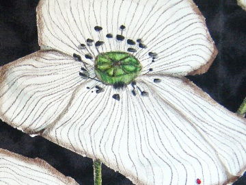 """White Poppies"" - DETAIL 1, oil on dyed canvas - 47 x 66 cm, 2009"